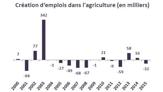 La part du secteur agricole dans le volume d'emploi demeure importante